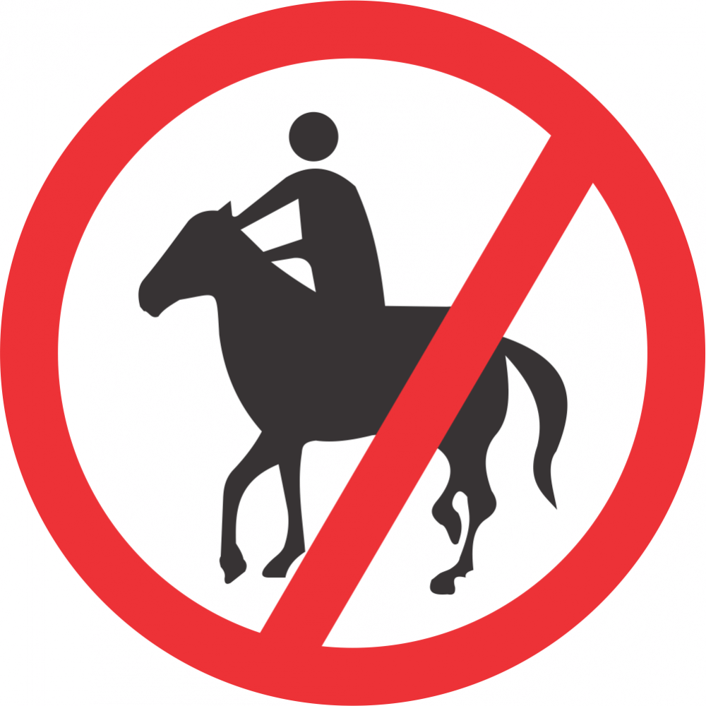 No Horses and Riders